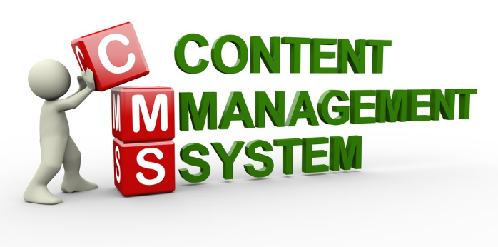 cms website development Dubai