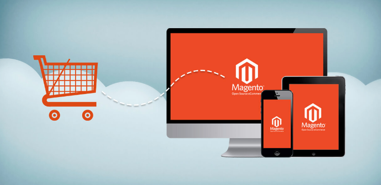 magento ecommerce web development